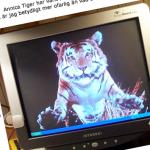 En internetlegend har dött! RIP Annica Tiger