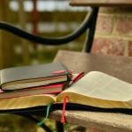 Gratis guide: bygga hemsidor i WordPress